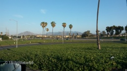 Camarillo Outlet Center