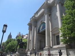 American Museum of Natural History