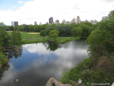 Turtle Pond vom Belvedere Castle