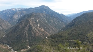 Blick in Kings Canyon