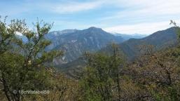 Blick im Kings Canyon