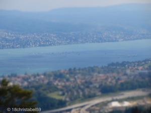 Zürichsee von oben