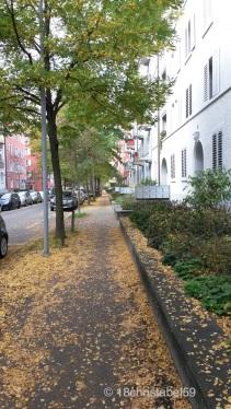 Goldregen in den Straßen