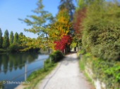 Fußweg entlang der Limmat