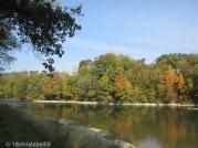 Limmat mit Herbstfarben