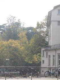 Blick auf den Botanischen Garten