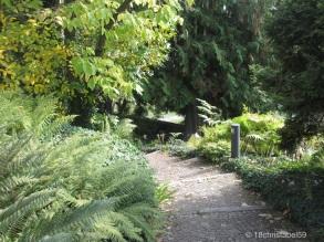 Weg durch den Botanischen Garten