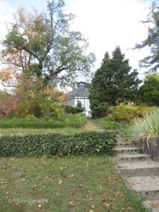 Botanischer Garten 4