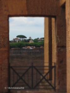 Ruinen auf dem Palatino