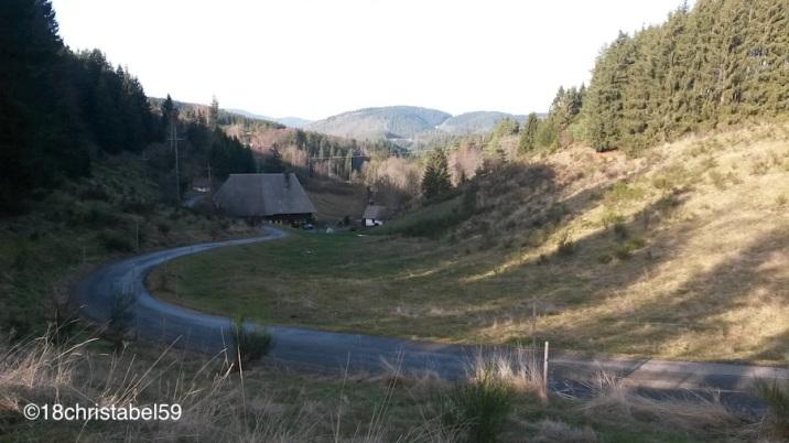 Mitten im Schwarzwald