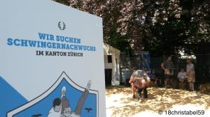 Schwingerclub Zürich