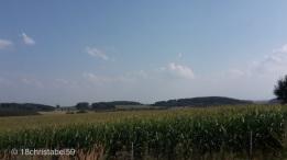 Irgendwo in Sachsen