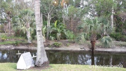 Sanibel Island - Ausblick in den Garten des Anchor Inns