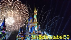 Disney's Magic Kingdom, Happily Ever After Show