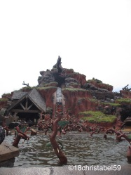 Disney's Magic Kingdom, Splash Mountain