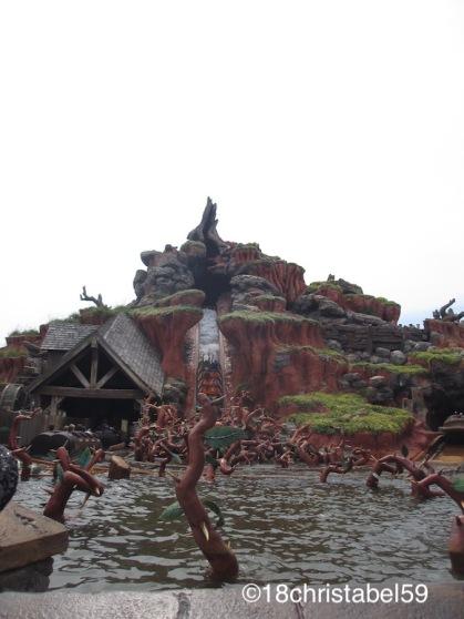 Disney's Magic Kingdom, Splash Mountain
