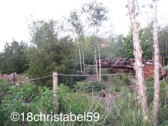 Disney's Magic Kingdom, 7 Zwerge Bahn