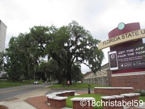 Florida State Uni
