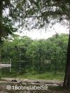 Wakulla Springs