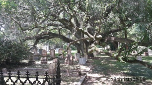St. Francisville - Grace Church Yard