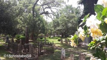 St. Francisville - Grace Church Yard