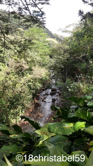 Waimea Valley