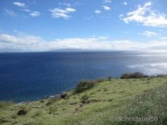 Papawai Point